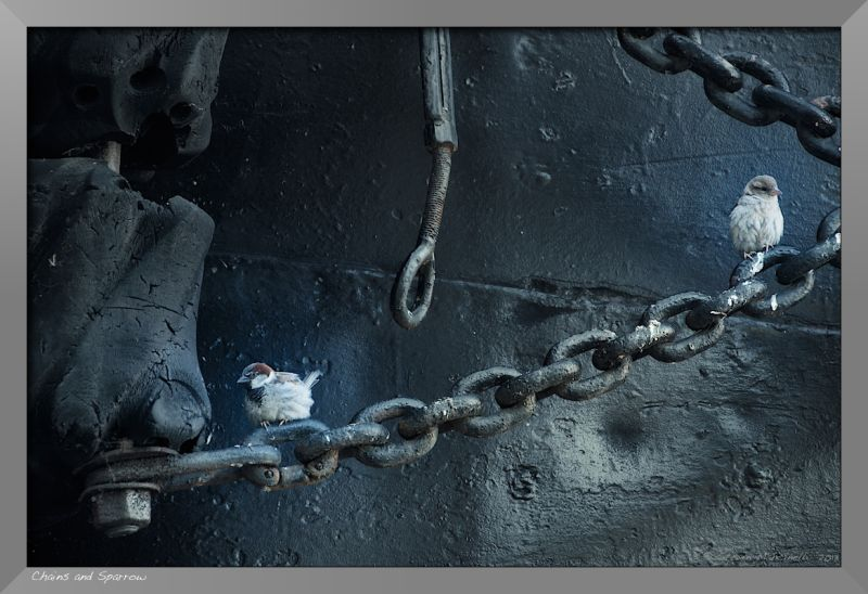 Ship Chains and Sparrows