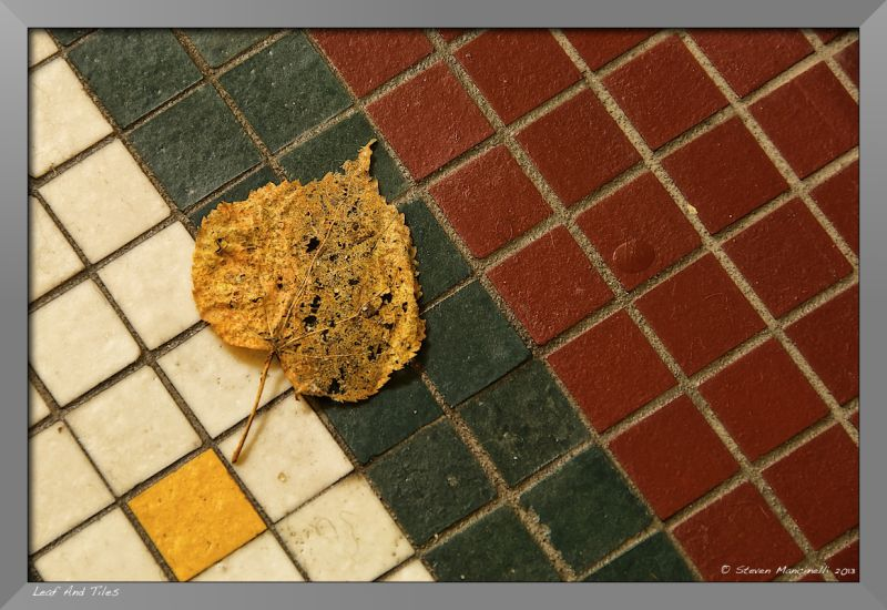 Leaf and Tiles