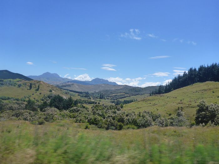 Drive By NZ