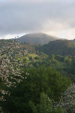 Asturias in the Spring