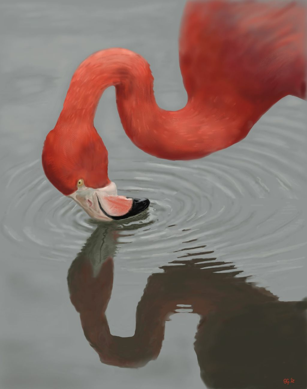 Digital Flamingo