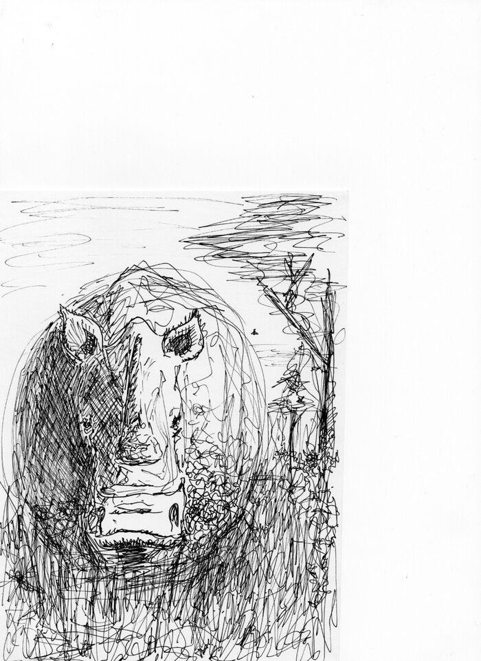 RhinoScribble