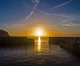 Charles Town Harbour Sun
