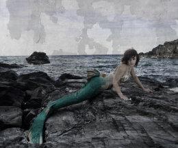 Sea Siren.
