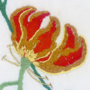 Detail of Glory Lily