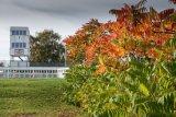 Autumn at the motor racing circuit