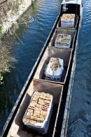 Transporting bricks on the canal