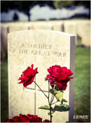 A Soldier of the Great War.