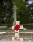 Y Ravine cemetery.....wet day.