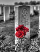Ration Farm (La Plus Douve) Annexe Cemetery, Hainaut.