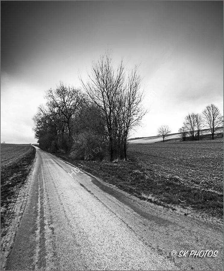 Wedge Wood, Somme.