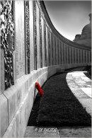 Tyne Cot Memorial.