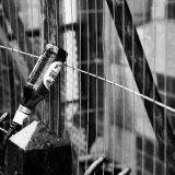 A bottle left on railings along the City Walls IMG 1113