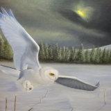 'The Night Stalker'