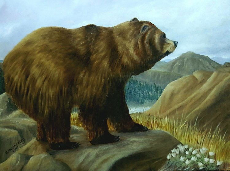 """'The Wind of Change'. A Grizzly Bear looks out over his Alaskan wilderness sensing the oncoming winter. Oil on canvas 20"""" x 16 By Steve Thorley 2017"""""""