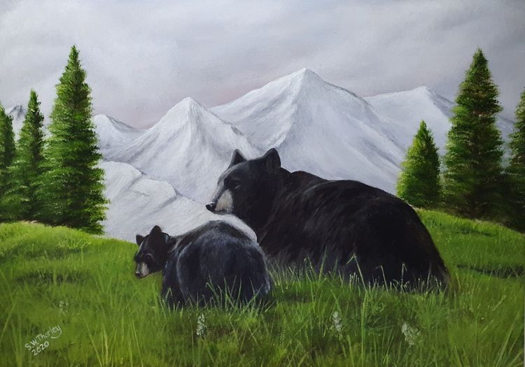 """""""The Bear Necessities"""".A Black Bear and her cub in their Alaskan wilderness home. Oil on Italian Canvas 50cm x 70cm By Steve Thorley 2020"""