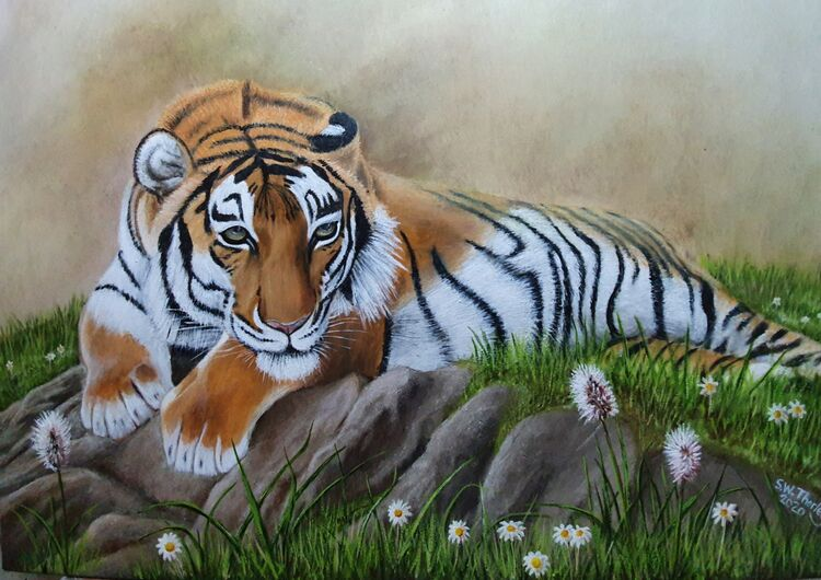 """After the Monsoon"" A Bengal Tiger relaxes in the post monsoon season whilst staying vigilant of intruders into his territory. Oil on Italian Canvas 50cm x 70cm By Steve Thorley 2020"