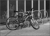 Cycle circles