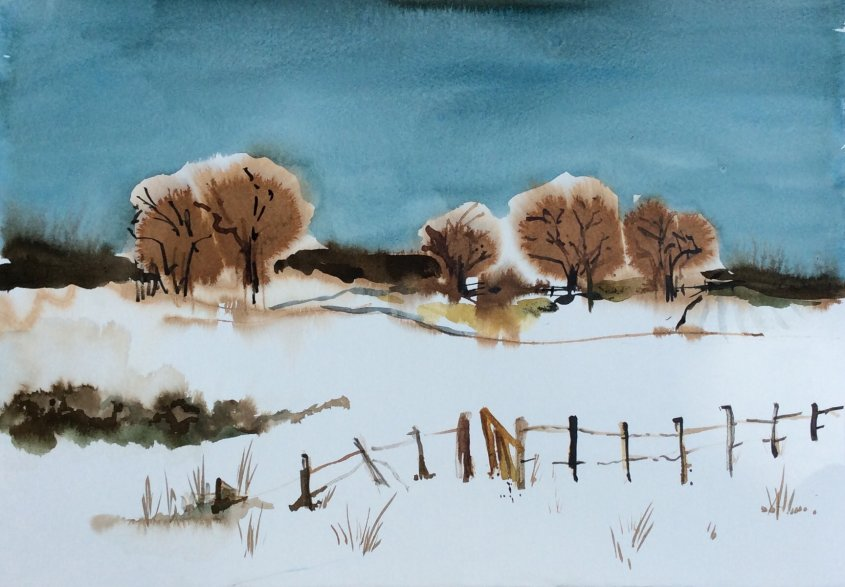 Winter hedge