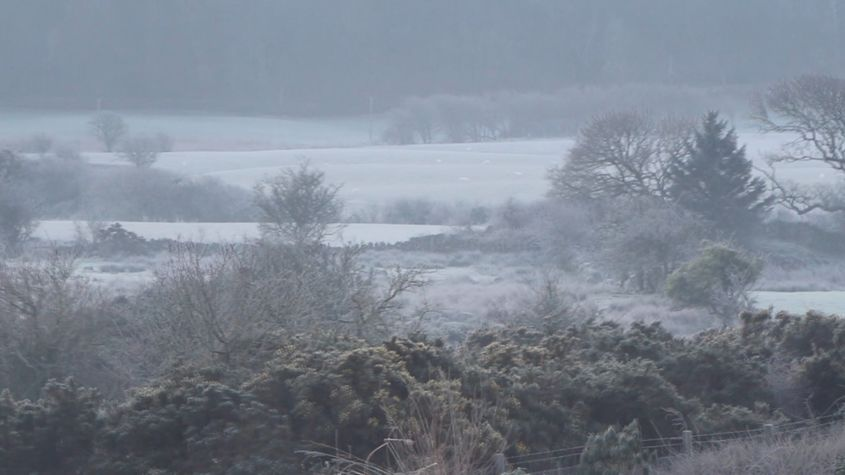 Still image from film 'mist' (2020)