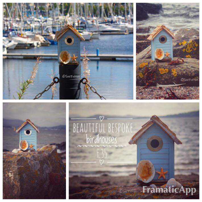 The Pearl and the Starfish bespoke birdhouse