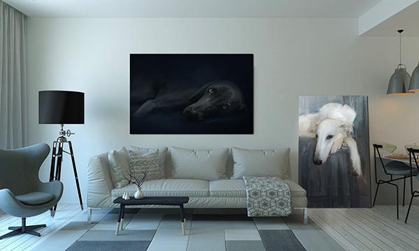 Dog Portrait display