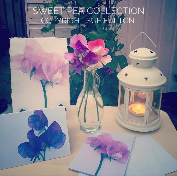 Cards and Prints, Sweetpea collection