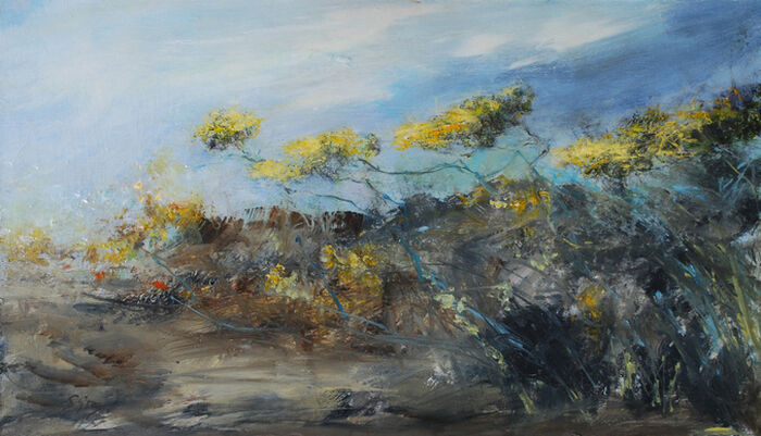 Gorse, West Penwith