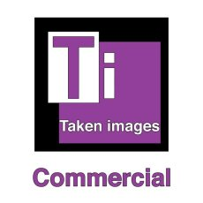 Commercial Photography Logo