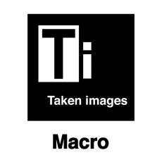 Macro Photography Logo