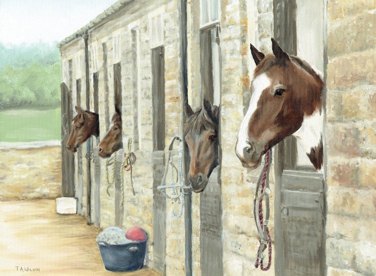 """Nosey """"Neigh""""bours"""