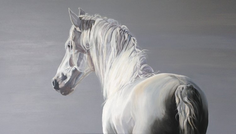 The Magnificent White Horse