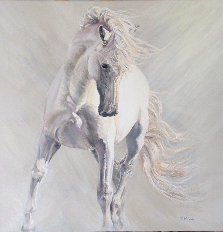 The Spirited White Horse