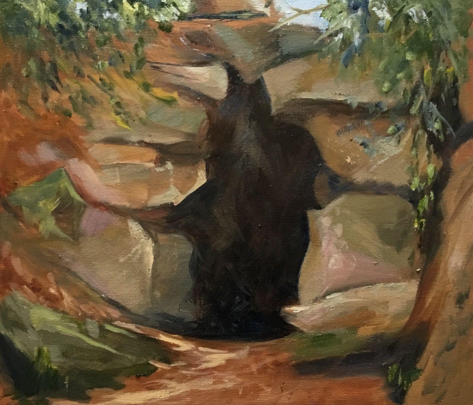 The Hermit's Cave, Batsford Arboretum.
