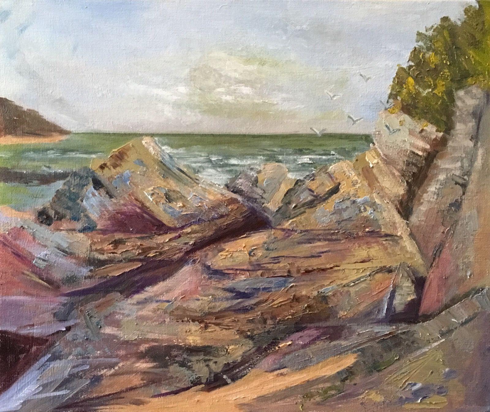 Gulls at Trevone.