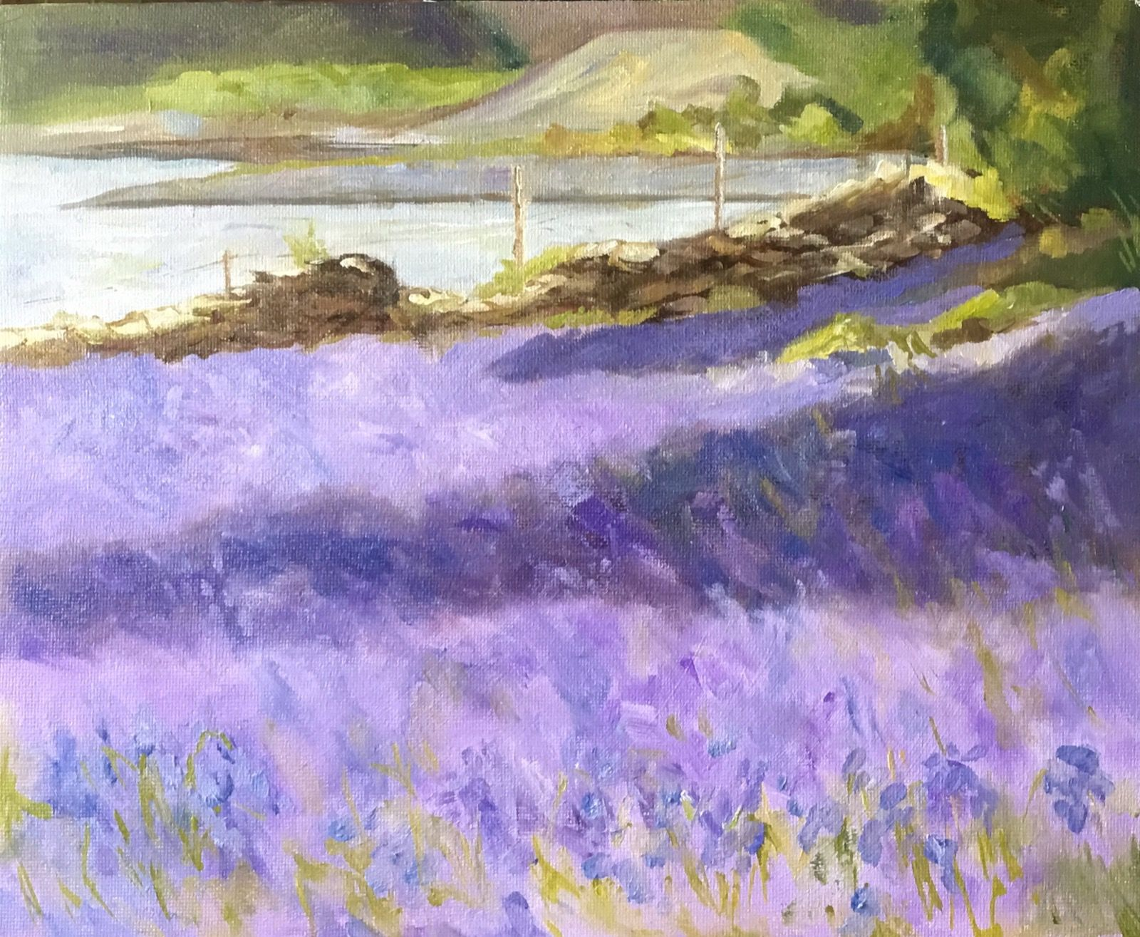 Bluebells, Loch Lomond.
