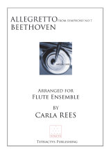 Beethoven - Allegretto from Symphony No 7