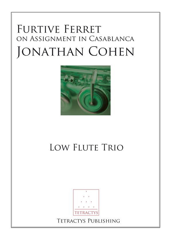 Jonathan Cohen - Furtive Ferret on Assignment in Casablanca