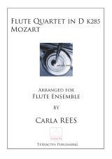 Mozart - Flute Quartet in D K285