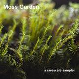 RR002 Moss Garden