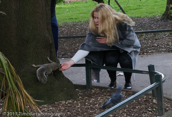 Feeding the squirrels