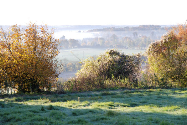 Frost over Alton