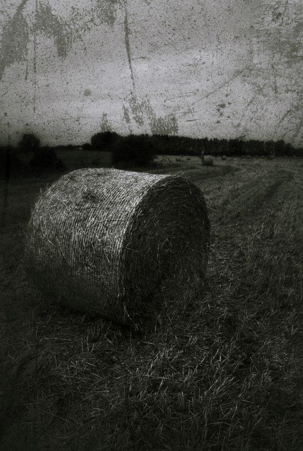 Hay bale @ White Horse Farm