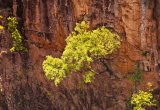 Katherine Gorge © Tom Benneyworth LRPS