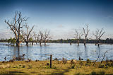 Murray River. © Tom Benneyworth LRPS