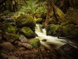 Stream Tasmania © Tom Benneyworth LRPS
