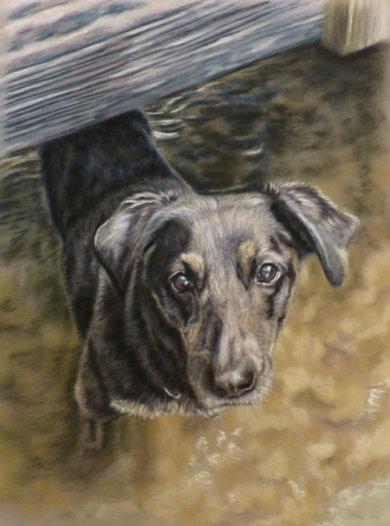Alyesha's Dog