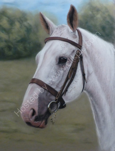 This painting was commissioned by Dave for his wife Liz