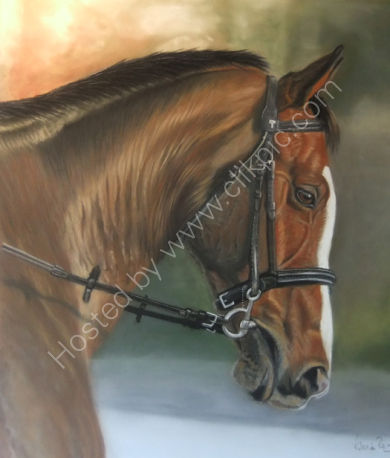 This is Poppy who was my very first horse painting