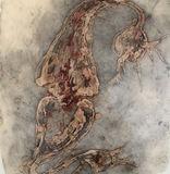 Synapse A
